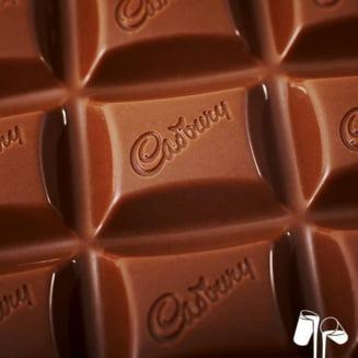 Peste 3 milioane de dolari stranse de cetateni intr-o saptamana ca sa salveze o fabrica de ciocolata