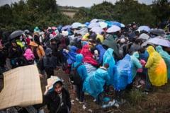 Peste 40 de migranti au ajuns la spital, dupa ce au fost gasiti inghesuiti intr-o duba