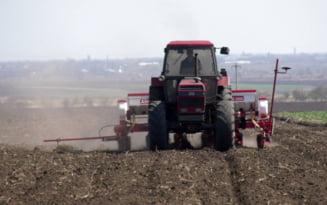 Peste 9.000 de fermieri din judetul Ialomita au depus documentele pentru obtinerea subventiei agricole