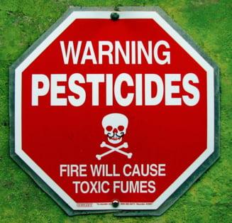 """Pesticidele, inamicul ascuns din alimentele """"ecologice"""""""