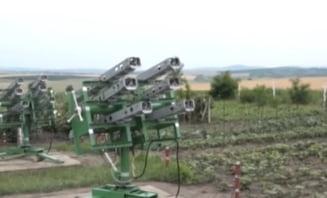 Petre Daea vrea protectie antigrindina in toata tara - au fost lansate peste 100 de rachete