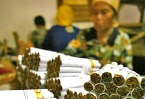 Philip Morris admite ca s-a folosit de copii, pe plantatiile de tutun