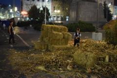 Piata Avram Iancu s-a transformat in grajd