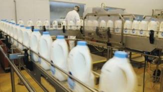 """Piata laptelui din Romania va fi """"sub ocupatie"""" nemteasca din 2015"""