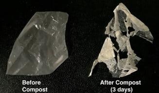Plasticul care se topeste in apa. Secretele unei inventii remarcabile care poate salva mediul inconjurator