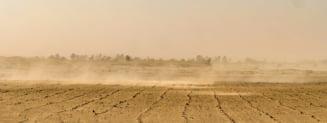 Ploaia, in cel mai arid desert de pe Terra, aduce moartea, nu viata!
