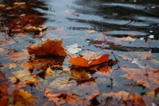 Ploi torentiale in Bucuresti duminica dupa-amiaza. Vremea se mentine instabila si racoroasa zilele urmatoare