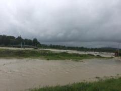 Ploile au facut ravagii in mai multe zone. Furtuna a rupt copaci, care au cazut pe masini