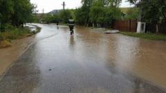 Ploile torentiale au facut ravagii in judet