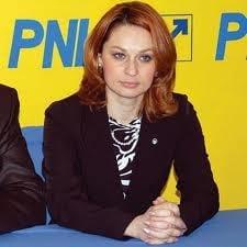 Pocora (PNL): Basescu saboteaza reforma constitutionala