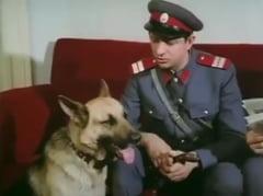 Politia Romana, mesaj la moartea lui Sebastian Papaiani: Ramas bun, plutonier Capsuna! (Video)
