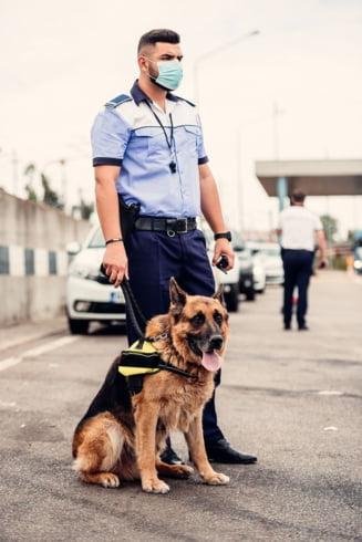 Politia a descins la un adapost de caini fara stapan din Sfantu Gheorghe care nu avea aviz DSVSA. Administratorii au fost amendati cu 40.000 de lei