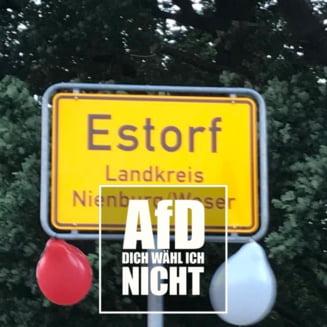 Politicieni locali din Germania, in vizorul neonazistilor - istoria celor mai recente victime si agresori