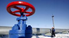 Polonezii acuza: Nemtii au primit gaze mai ieftine de la rusi in tot acest timp!