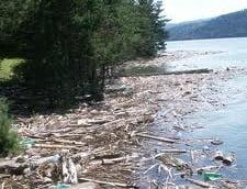 Poluare cu petrol pe un lac din Dambovita (Video)