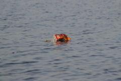 Poluare pe raul Colentina, acumularea Baneasa. Apele Romane: Monitorizam mortalitatea piscicola si afectarea biodiversitatii