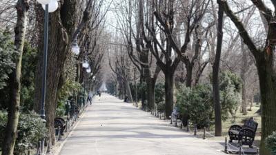 Povestea Gradinii Cismigiu, de la o balta, la cel mai popular parc din Bucuresti