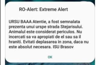 """Povestea din spatele bizarului mesaj RO-Alert care i-a terorizat pe brașoveni, devenit viral pe internet: """"URSU BAAA"""""""