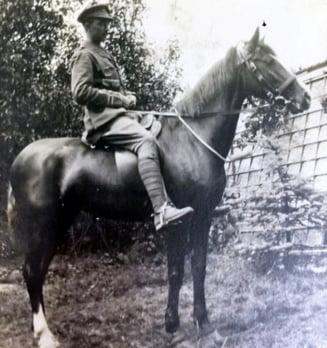 Povestea incredibila a unui cal de razboi: cum a salvat mii de soldati in Primul Razboi Mondial (Galerie foto)