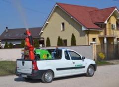 Prefectura analizeaza legalitatea delegarii Romprest ca unic operator pe serviciul de dezinsectie in Oradea