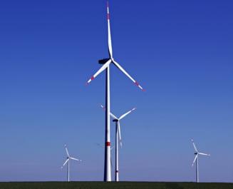 Premiera in Germania: Regenerabilele au depasit carbunele in 2018, devenind principala sursa de energie