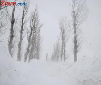 Premiera pentru Romania. Cod rosu de ninsori si viscol, pentru trei judete Update (Video)