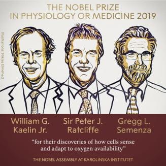 Premiul Nobel pentru Medicina: Descoperirea care ajuta in lupta cu anemia sau cancerul