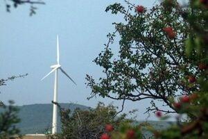 Presa spaniola: In Dobrogea se construieste cel mai mare parc eolian din Europa