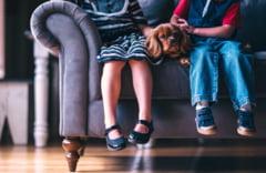 Presedintele Asociatiei Scolilor Particulare afirma ca activitatea de tip afterschool poate fi desfasurata in continuare in Capitala