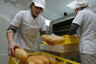 Pretul painii ar putea creste, din cauza scumpirii cerealelor