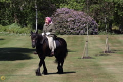Prima aparitie a reginei Elisabeta a II-a dupa autoizolare: A calarit un ponei, in curtea Castelului Windsor (Foto)