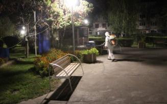 Primaria Capitalei: De duminica se va desfasura o noua actiune de combatere a tantarilor