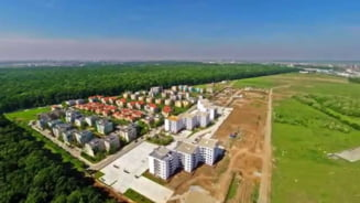 Primaria Capitalei vrea sa faca un drum de acces intr-un cartier rezidential prin padurea Baneasa