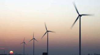 Primarul din Cogealac impiedica dezvoltarea parcului eolian