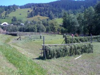Prime de 3 milioane de euro pentru fermele care trec la agricultura ecologica