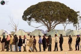 Primii 30 de refugiati din Libia au ajuns miercuri la Timisoara (Video)