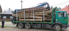 Primul camion confiscat in Romania in baza noului Cod Silvic. Ce schema au folosit proprietarii pentru furtul masiv de busteni