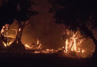 Primul mare incendiu de vegetatie din Grecia din acest an. Sase sate si doua manastiri, evacuate VIDEO
