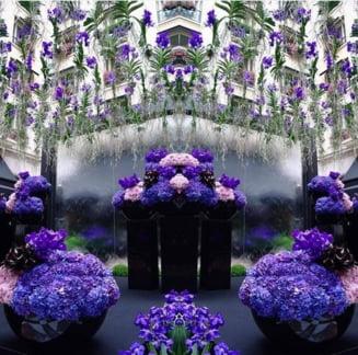 Prince a murit - Cladirile au devenit purpurii, oamenii canta in strada (Galerie foto)