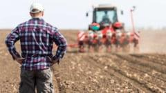 Principala problema a fermierilor romani: Nu gasim oameni care sa munceasca, indiferent de salariu si de conditii