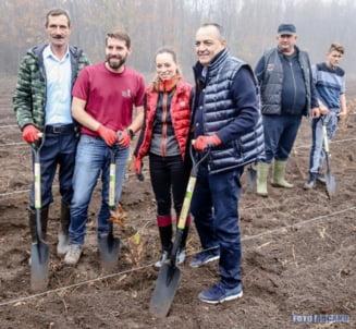 """Principele Nicolae al Romaniei a plantat stejari in padurea Albele, din fosta localitate giurgiuveana """"Principele Nicolae""""! (FOTO)"""