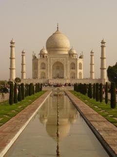 Problema spinoasa in India: Insectele fac Taj Mahalul verde