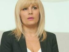 Procesul fratilor Gardean, judecati pentru ca i-ar fi dat mita Elenei Udrea, incetat definitiv, ca urmare a prescrierii faptelor
