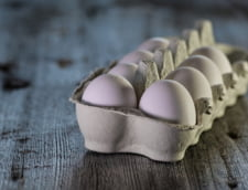 "Producatori: Un ou se vinde la poarta fermei la ""un pret de faliment"""