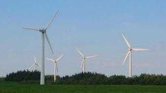 Producatorii de energie verde nu accepta reducerea subventiilor - vezi ce profituri au