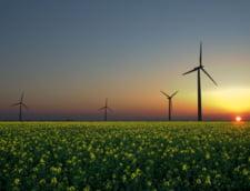 Productia de energie verde din Romania s-a dublat in 2010, fata de 2009