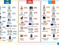 Profilul votantilor PNL, USR-PLUS si PSD la alegerile europarlamentare