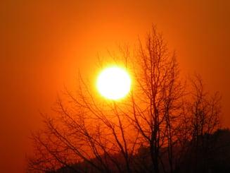 Progoza meteo pentru vara 2010: temperaturi peste 40 de grade, seceta si vijelii