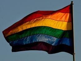 Programele de reorientare sexuala a homosexualilor duc la sinucidere