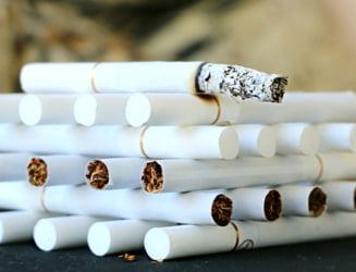Proiect anti-tutun: Taxele platite la buget de catre industria tutunului ar putea scadea cu 40%
